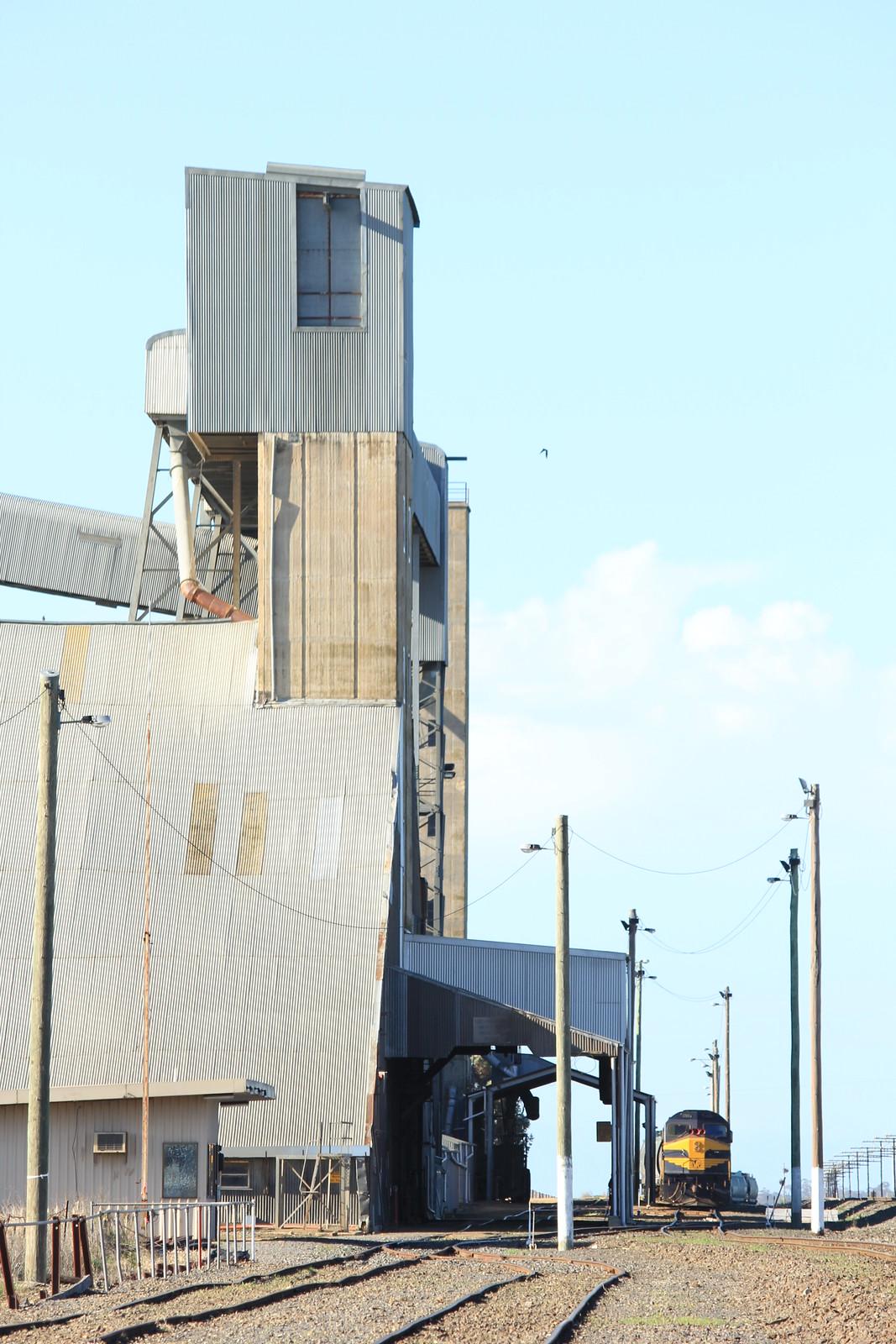 C501 shutdown on its grain train next to the Marmalake grain loader by bukk05