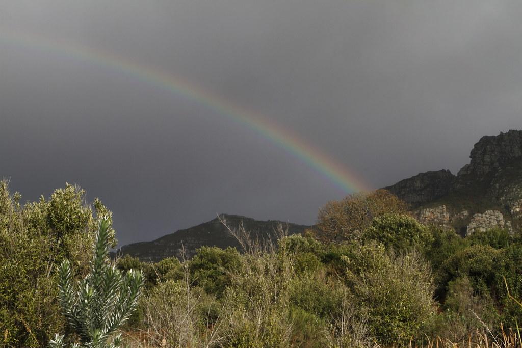 Kirstenbosch National Botanical Garden Cape Town South A Flickr
