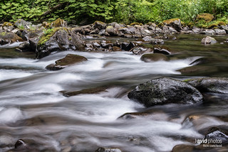 Sol Duc Trail - Olympic National Park on 2012-08-26 - _DSC3296.NEF | by laviddichterman