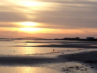 Causeway bridge from Bunche Beach | by Erin *~*~*