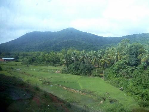 india plantation manikkara