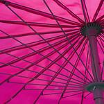 Pink Parasol...