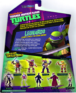 Nickelodeon Teenage Mutant Ninja Turtles Leonardo Card Flickr