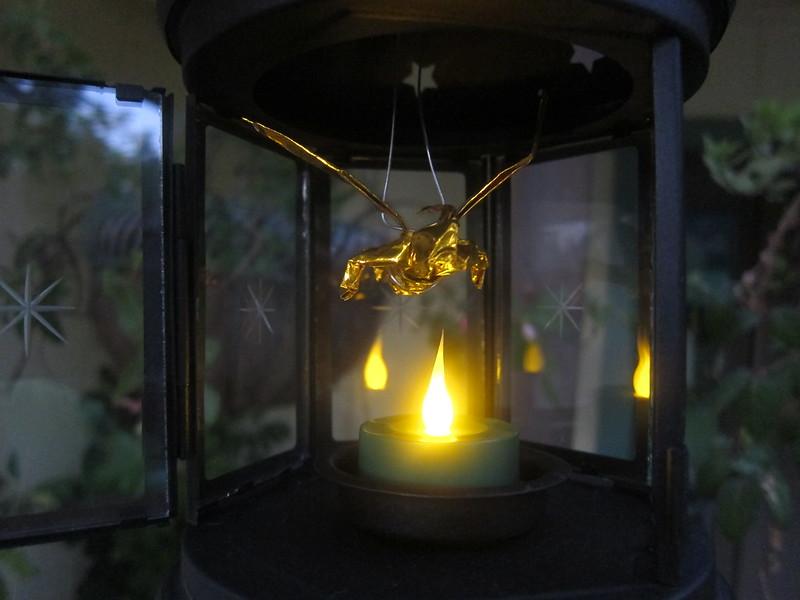 Fairy Lantern (Lit) (5)