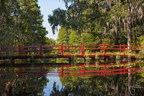 bridge red reflection garden landscape magnolia tonten
