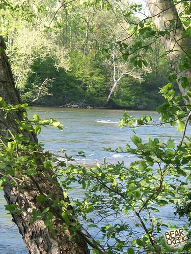 lake nature river nc meadow northcarolina conover riverbend countypark riverbendpark catawbariver catawbacounty
