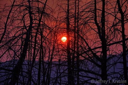 orange tree sunrise landscape haze montana smoke sillhouette elkmountain gallatinnationalforest colorphotoaward