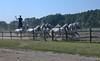 Reit- und Geschicklichkeits-Vorführung der ungarischen Pferdehirten, Tschikoschen genannt.