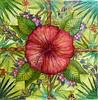 Lamma Garden Hedgerow