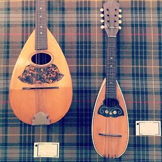 vintage mandolins! | by sarahwulfeck
