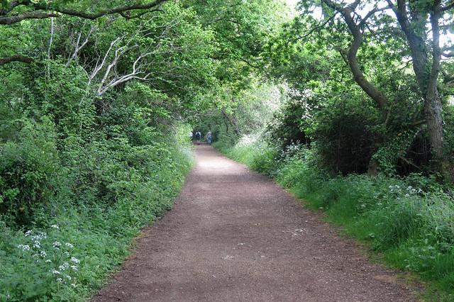 Old railway path beside the Yar