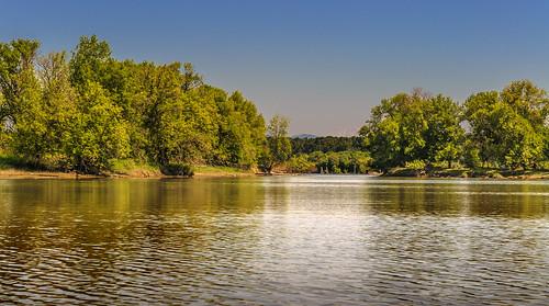 trees summer water oregon river bay kayak august paddling slough mtsthelens 2012 multnomahchannel scappoose