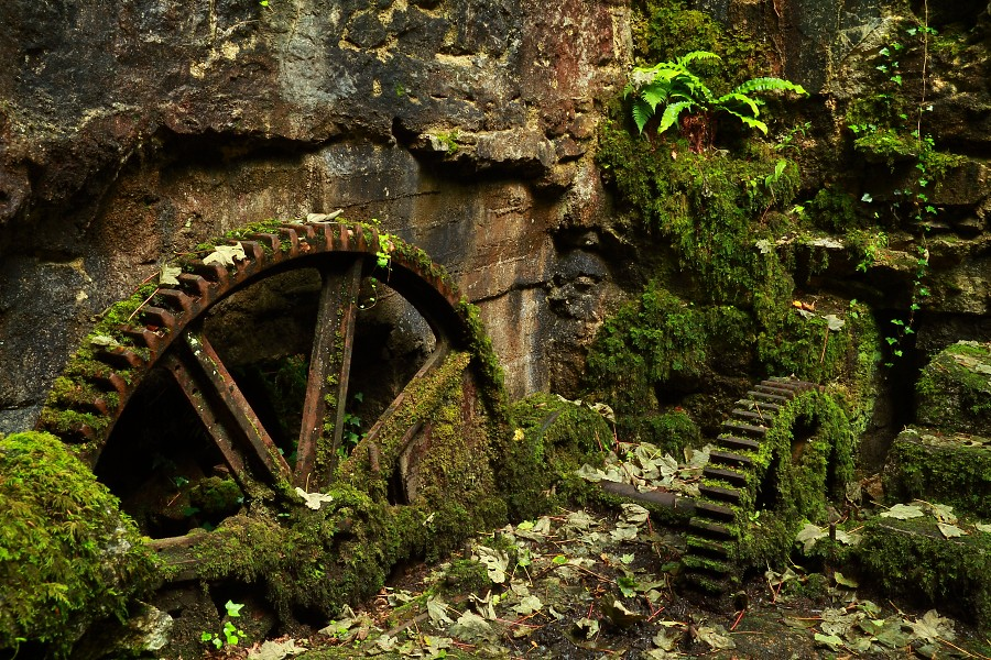 Reclaimed By Nature Machinery At The Old Gunpowder Works