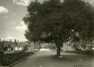 College Gates circa 1915 (built in 1914)