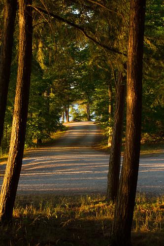 sunset silverlake easternontario lanarkcounty