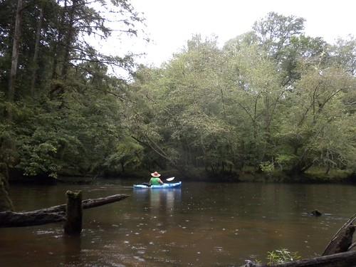 river swater swamp sc carolina edisto adventure kayaking paddle forest wetland bamberg orangeburg drops rain wet outofafghanistan usc