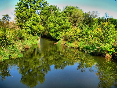 Bliss Woods HDR 20120908 | by Kenneth Cole Schneider