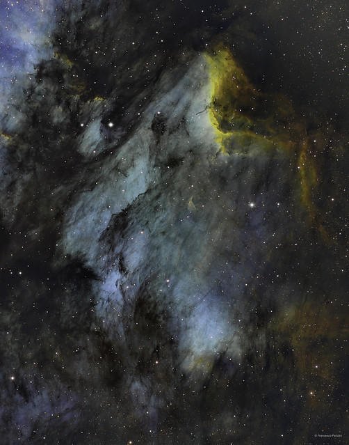 IC 5070 - The Pelican Nebula