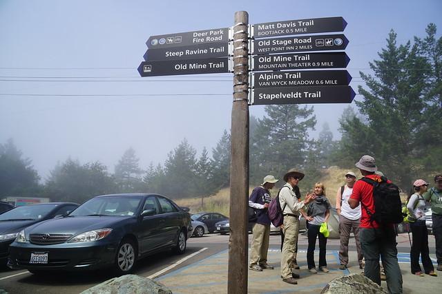 Mount Tamalpais: Rock Spring to Stinson Beach Hike (18)