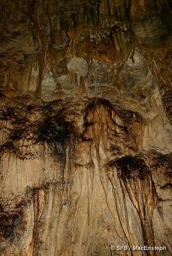 puertorico caves cavernas portorico riocamuy cavernasdelriocamuy