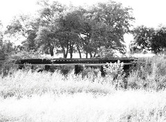 Abandoned Railroad Right-of-Way between Fannett and Winnie, Texas 1209031745BW