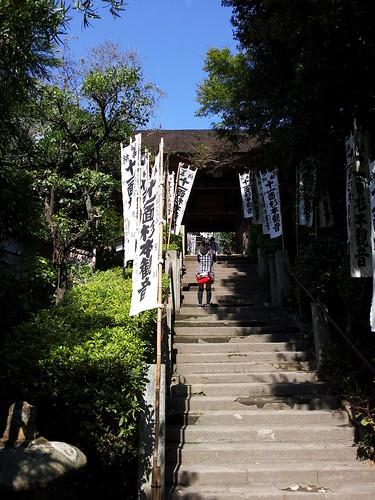 2012/10/08 (月) - 12:54 - 杉本寺