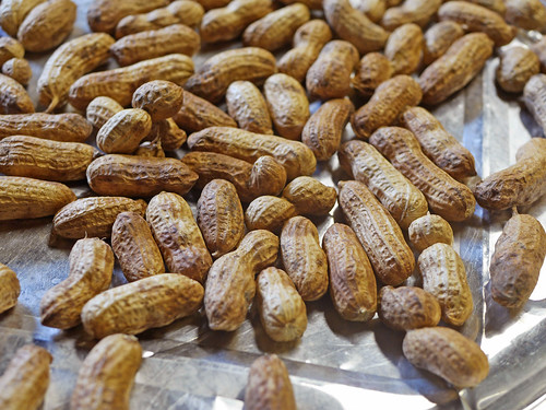 Tennessee Red Valencia Peanuts | by pjchmiel