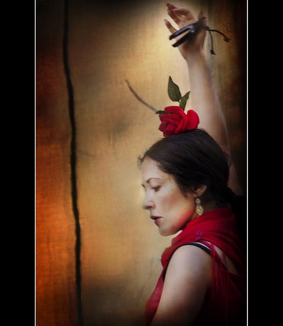 Flamenco  (Explored)