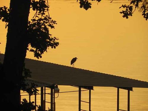 sun sunrise tablerocklake newsvine kimberlingcitymissouri bransonvinemeet2012 postofkimberlingcitymissouri