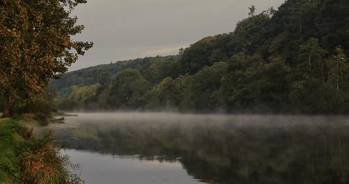 morning autumn trees ireland irish mist green fall water fog forest sunrise river dawn woods day cork bank lee mick riverbank riverlee dunne clods mickdunne