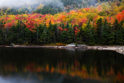 autumn reflection fall pond whitemountains whitemountainnationalforest canon7d robertaclifford robertallanclifford cliffordphotographynhcom