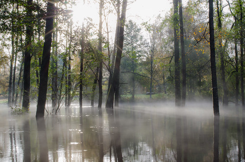 sun sverige svenljunga västragötalandslän autumnflood översvämning2012