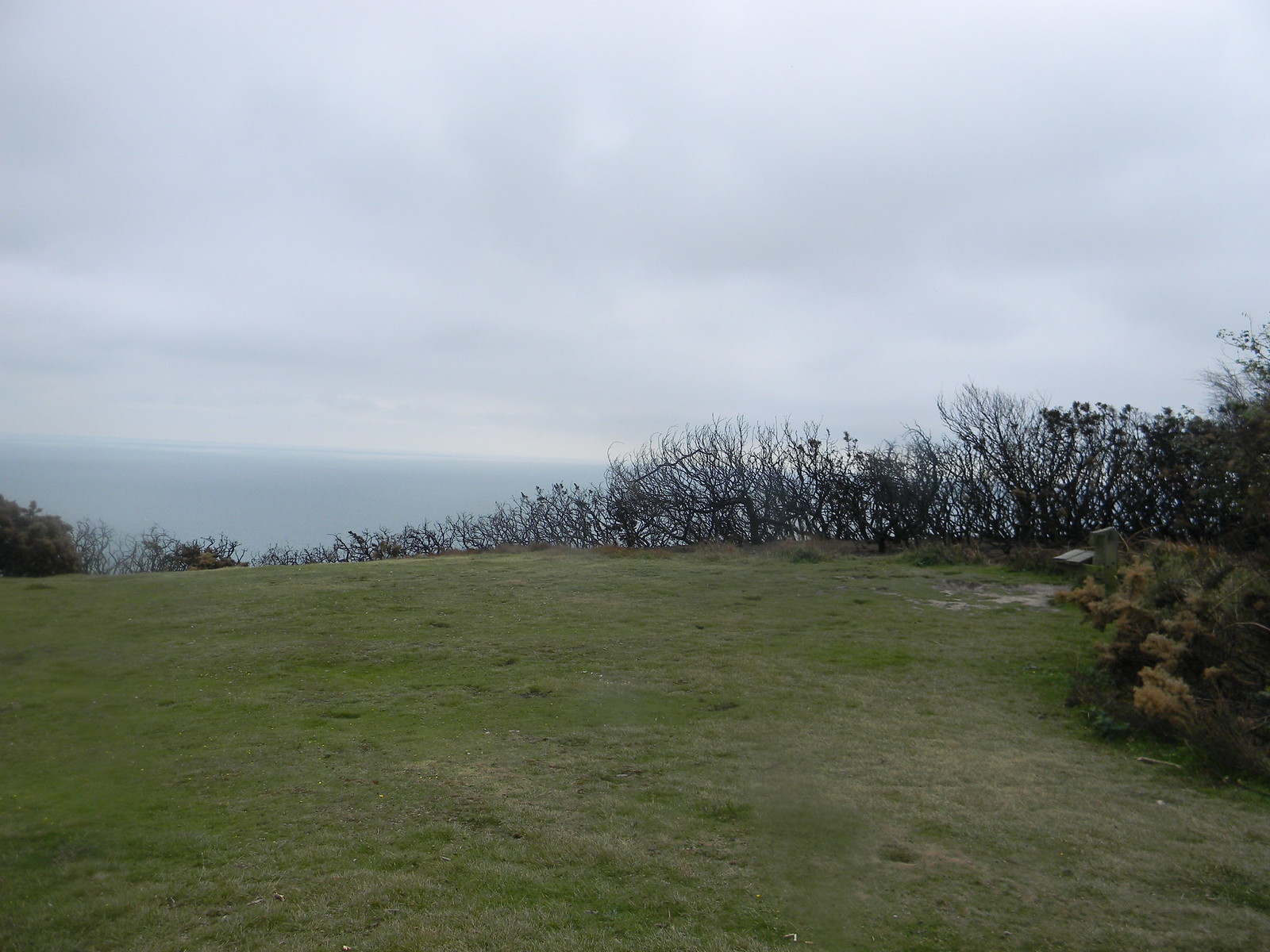 Burnt gorse and sea Hastings to Rye