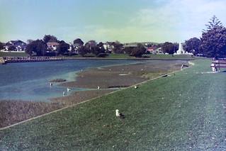 A Gisborne park by the Turanganui River