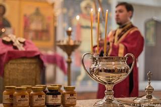 Литургия в Юрьевом монастыре 240