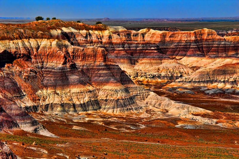 Desierto pintado
