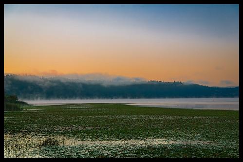 park summer fog outdoor september redmond 2012 marymoor lightroom ef24105mmf4lisusm canoneos5dmarkiii flickrnova