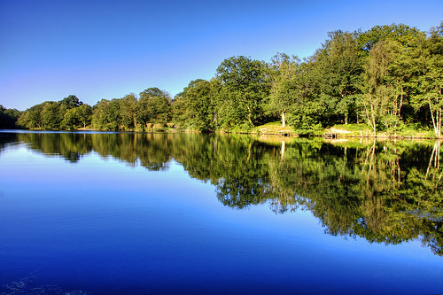 Lower Cannop Pond | by Mike G Photos