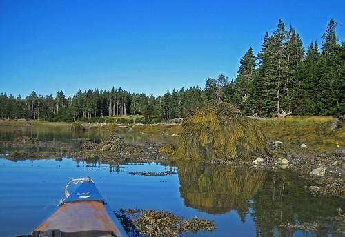 maine kayaking southaddison easternharbor