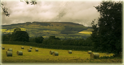 park barley canon hills bales tipperary templemore devilsbit