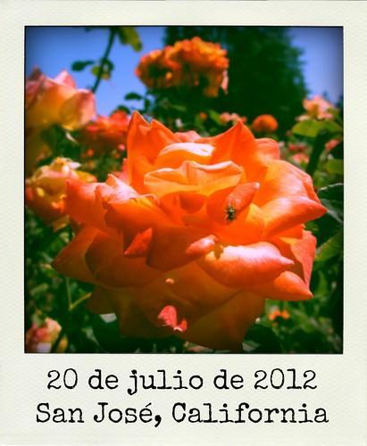 20 de julio de 2012 | by Maite Ramos Ortiz