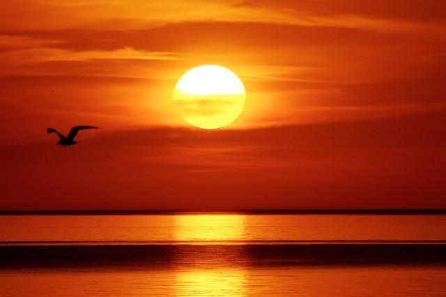 Sunrise Over Lake Michigan - EXPLORED, 8-26-2016