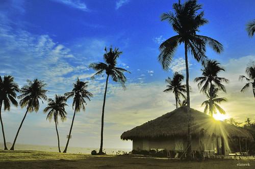 sunset beach island afternoon philippines cebu scubadiving visayas cebuano malapascuaisland threshersharks monadshoal cogonhut