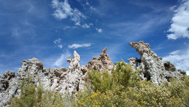 Sky, Tufa, and the evil Rabbitbrush #MonoLake
