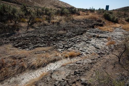 oregon centraloregon arlington stream unitedstates farm arid sagebrush basalt