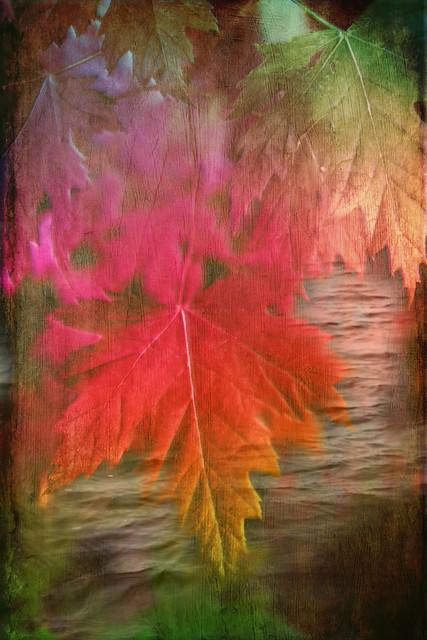 Autumn Returns