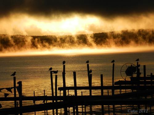 sky sun water sunrise nikon outdoor serene morningmist chautauqua chautauquany chautauqualake coolpixp500 blinkagain