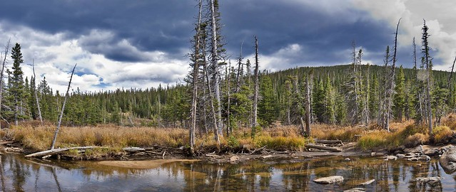 South St Vrain Creek Panorama