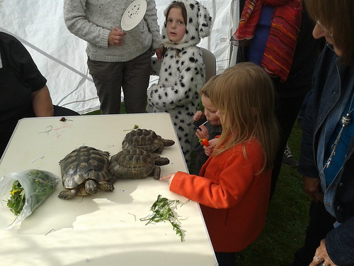 Isabella and Lucas with tortoises