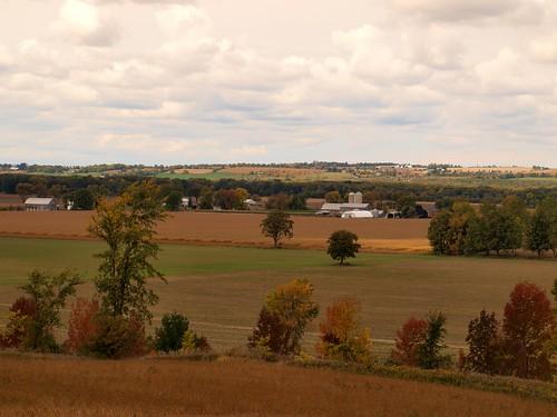 autumn ontario canada fall field tottenham